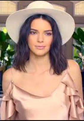 Kendall Jenner Phone Number, Fanmail Address and Contact Details